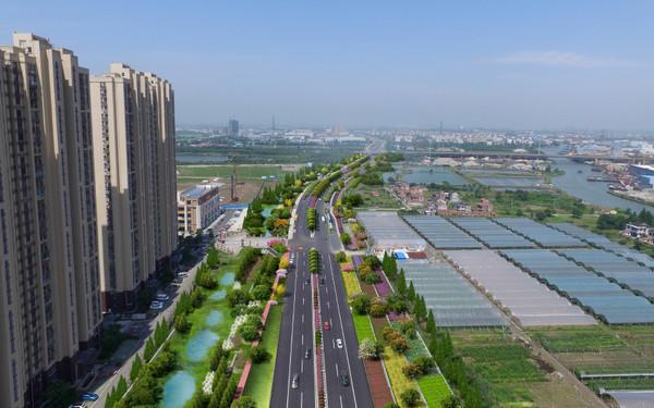 昆山迎宾路改造工程绿化景观改造设计